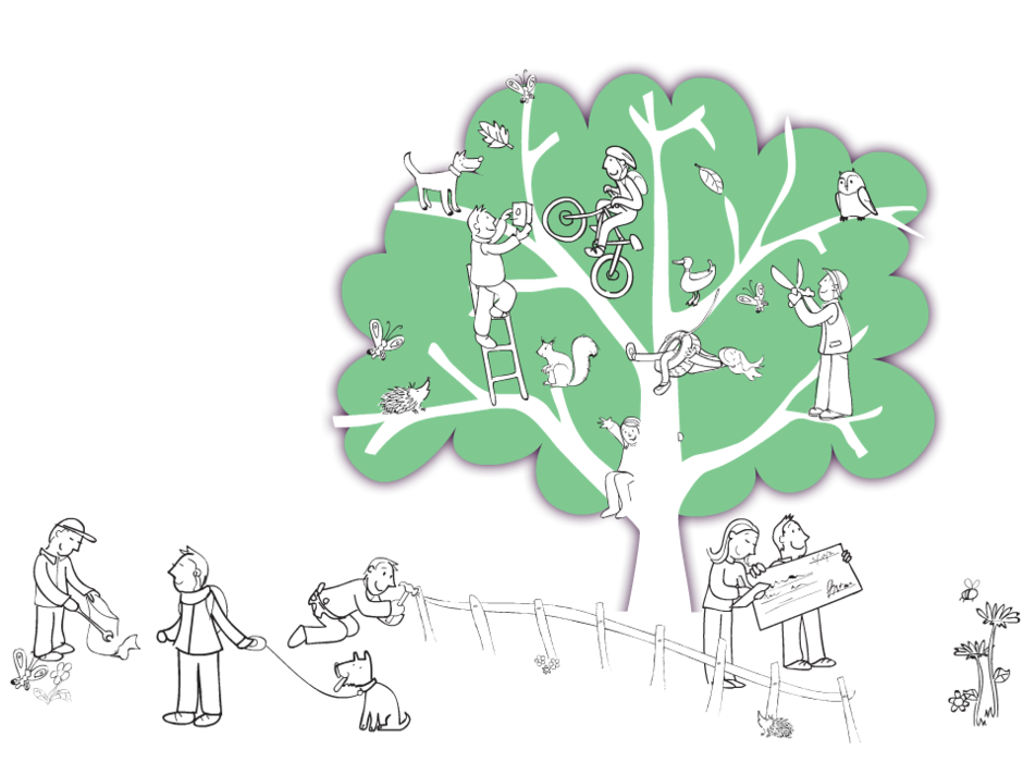 Veolia trust tree graphic
