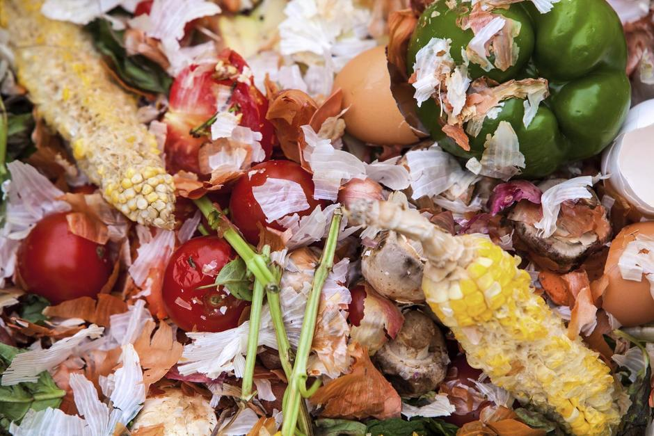 Veolia UK _ First Recycling Company To Join Food Waste Pact